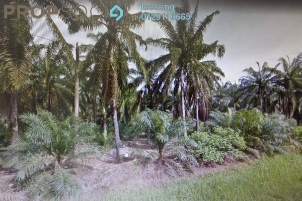For Sale Land at Asahi Lot 15, Ijok Leasehold Unfurnished 0R/0B 890k