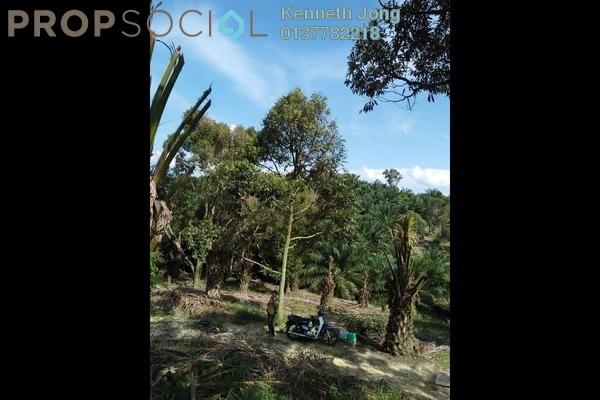 For Sale Land at Taman Karak, Pahang Freehold Unfurnished 0R/0B 45.7m