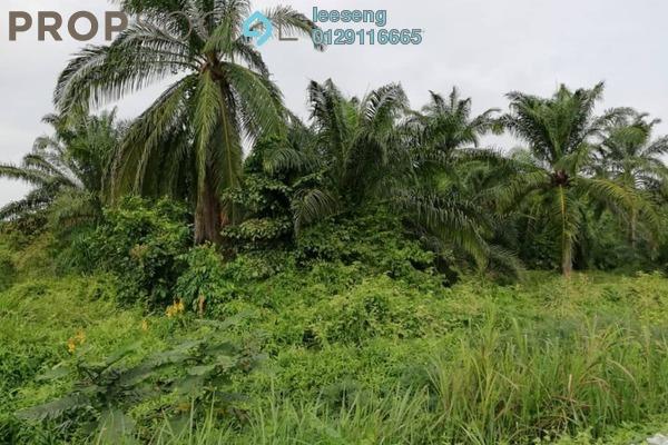 For Sale Land at Kampung Sungai Sembilang, Jeram Freehold Unfurnished 0R/0B 6m