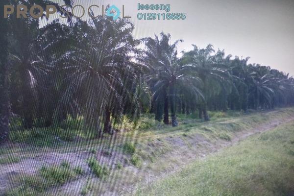 For Sale Land at Kampung Bukit Changgang, Banting Leasehold Unfurnished 0R/0B 1.77m