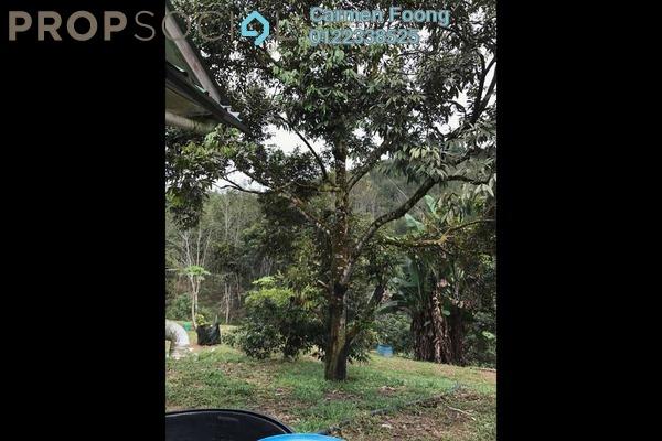 For Sale Land at Kuala Klawang, Jelebu Freehold Unfurnished 0R/0B 7.5m