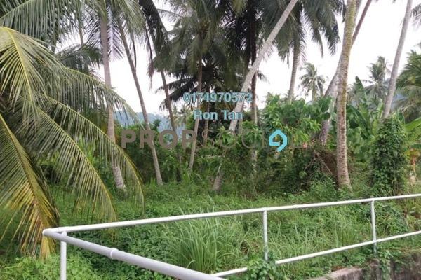 For Sale Land at Pulau Betong, Balik Pulau Freehold Unfurnished 0R/0B 950k