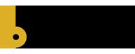 Logo binastra1