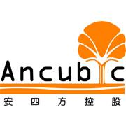 Developed By Ancubic Group
