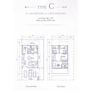 Type c precinct arundina propsocial small