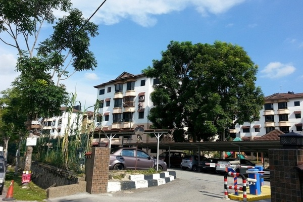 Zapin Apartment's cover picture