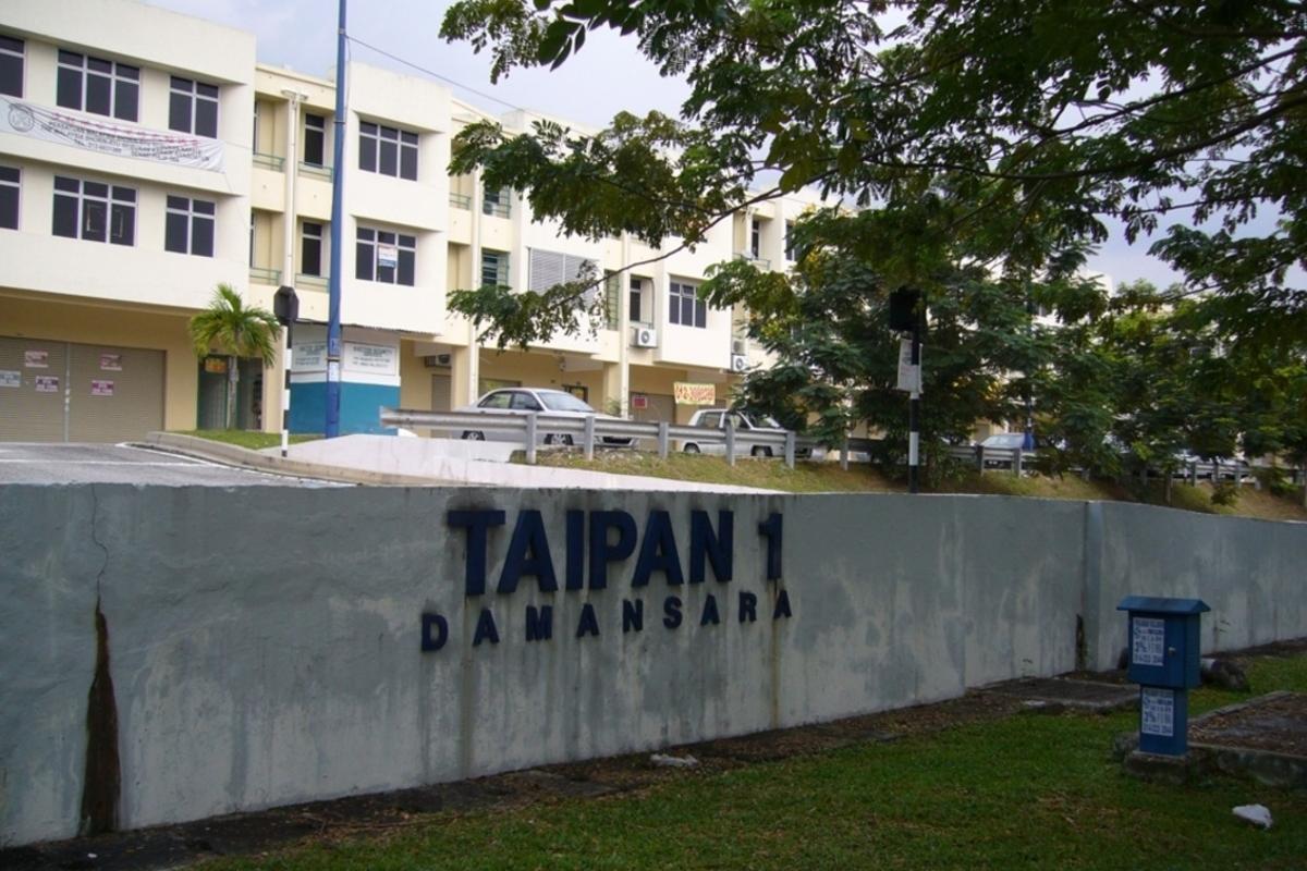 Taipan 1 Photo Gallery 0
