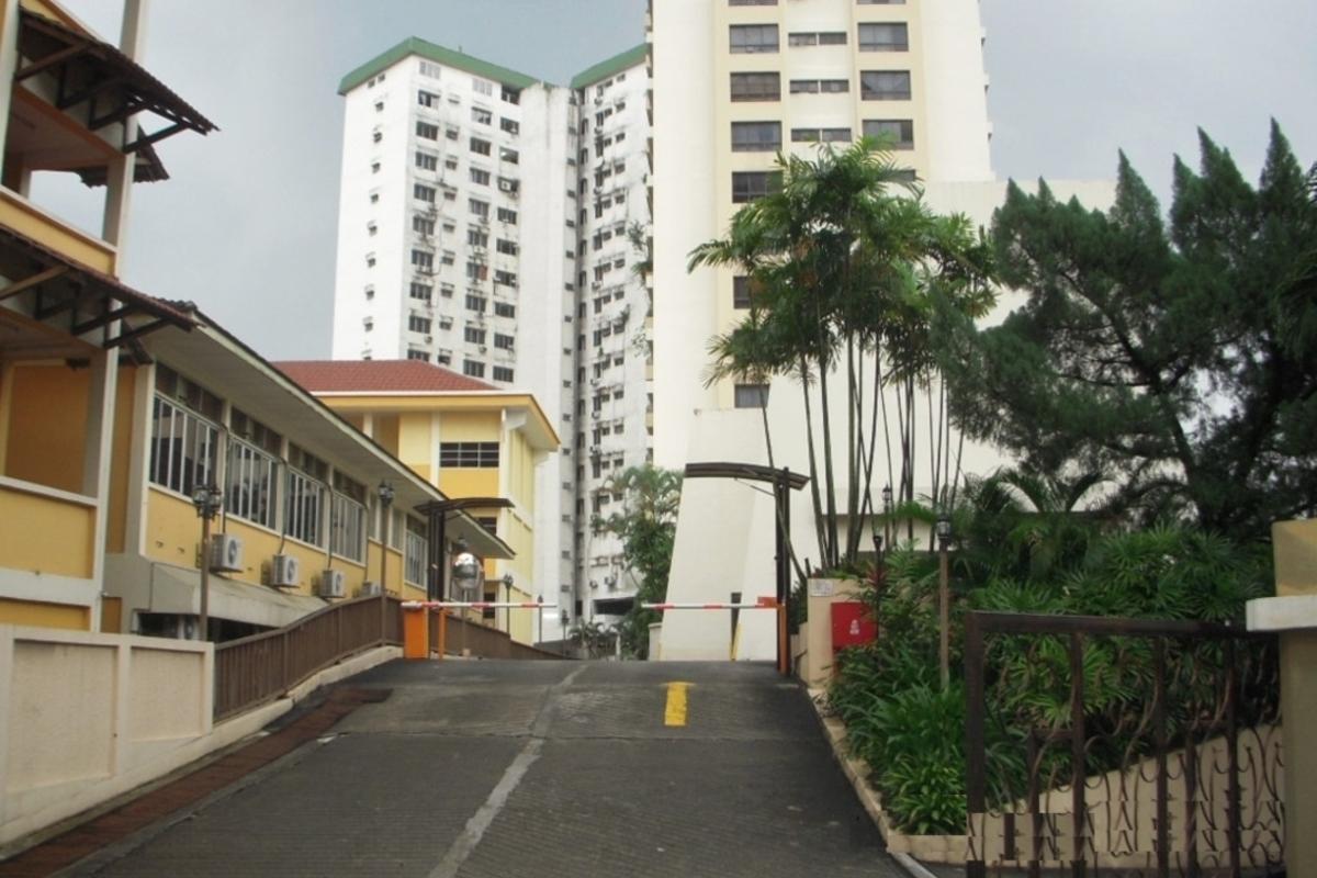Bougainvilla Photo Gallery 1