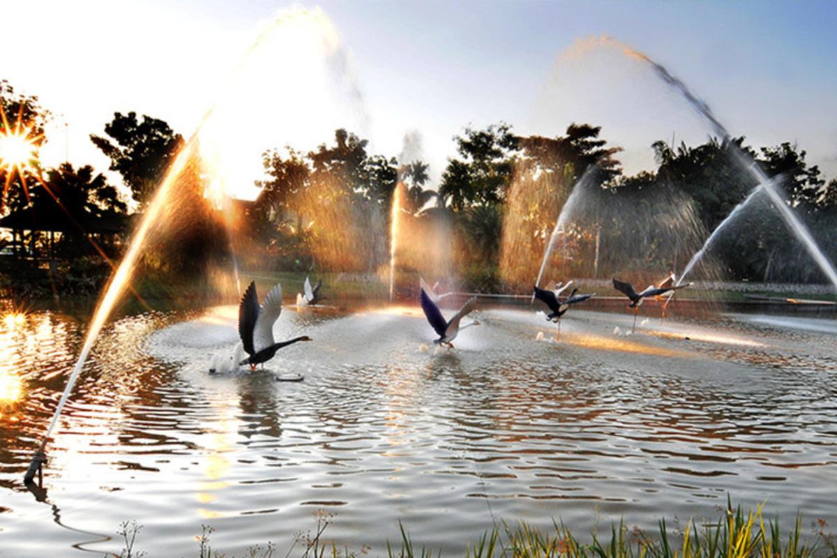 Bandar Botanic Photo Gallery 4