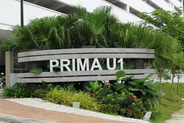 Prima U1's cover picture