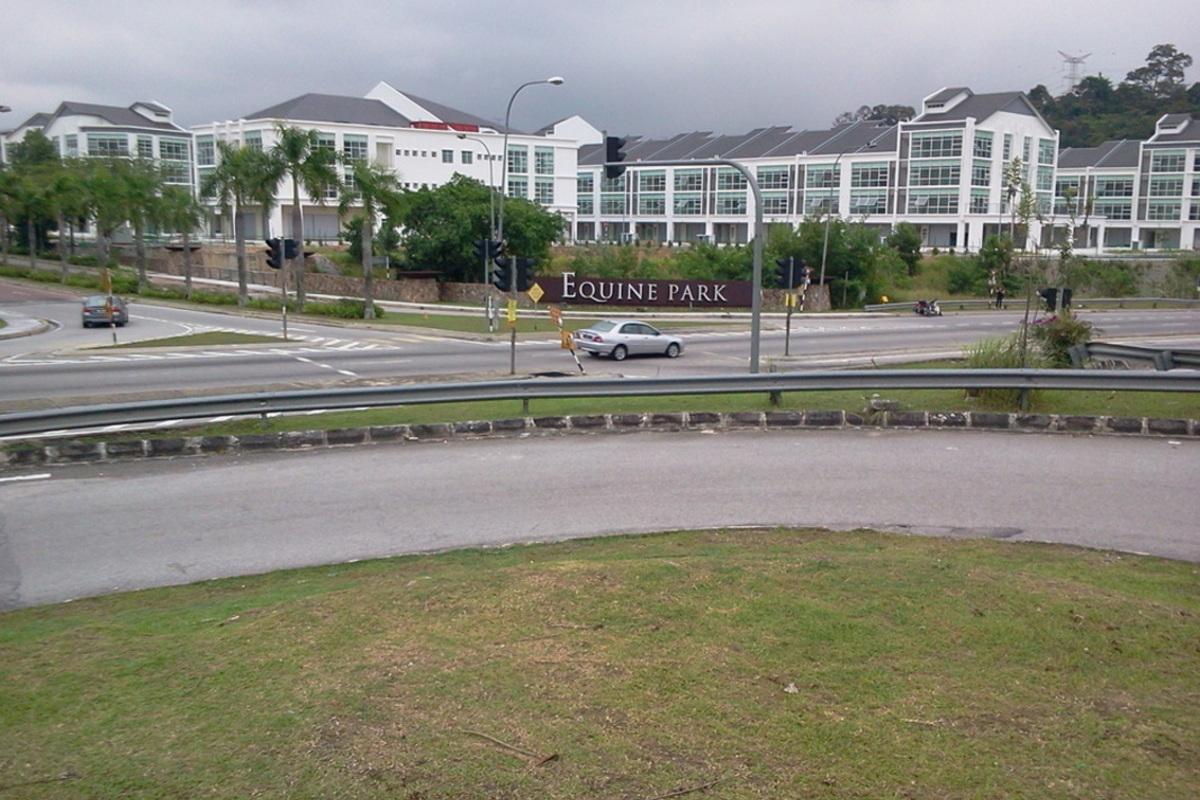Equine Boulevard Photo Gallery 1