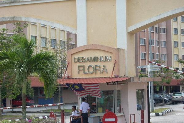 Desaminium Flora's cover picture