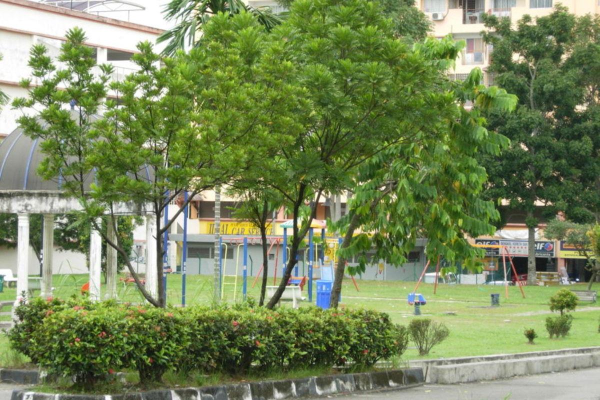 Putra Raya Apartment Photo Gallery 7