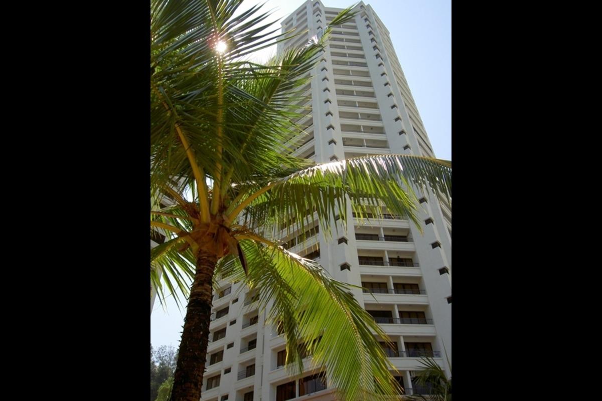 Miami Green Photo Gallery 3