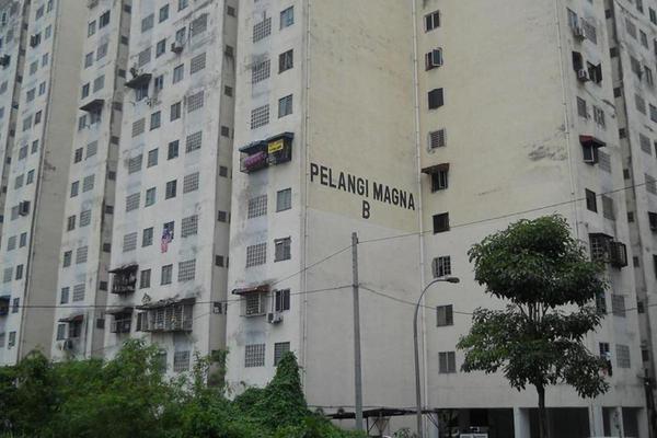 Pelangi Magna's cover picture