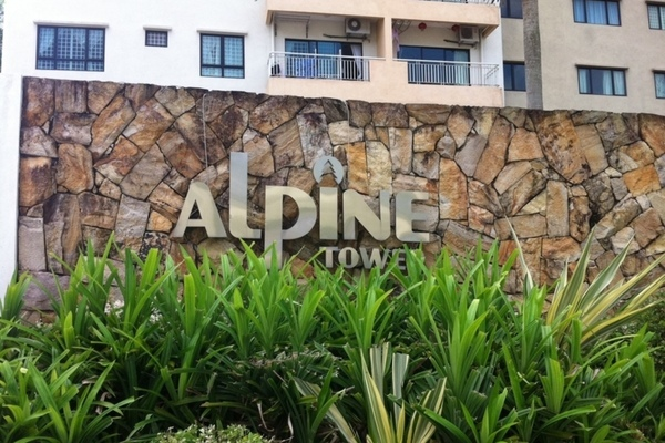 Alpine Tower's cover picture