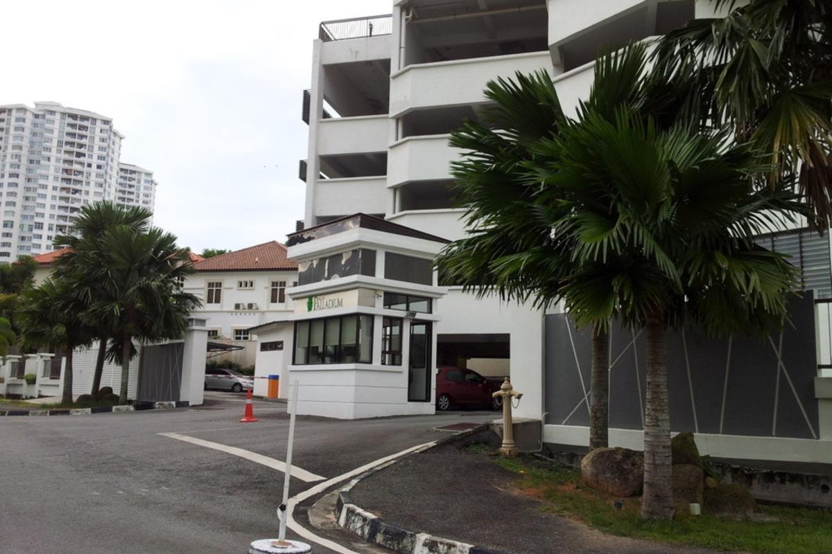 Palm Palladium Photo Gallery 0