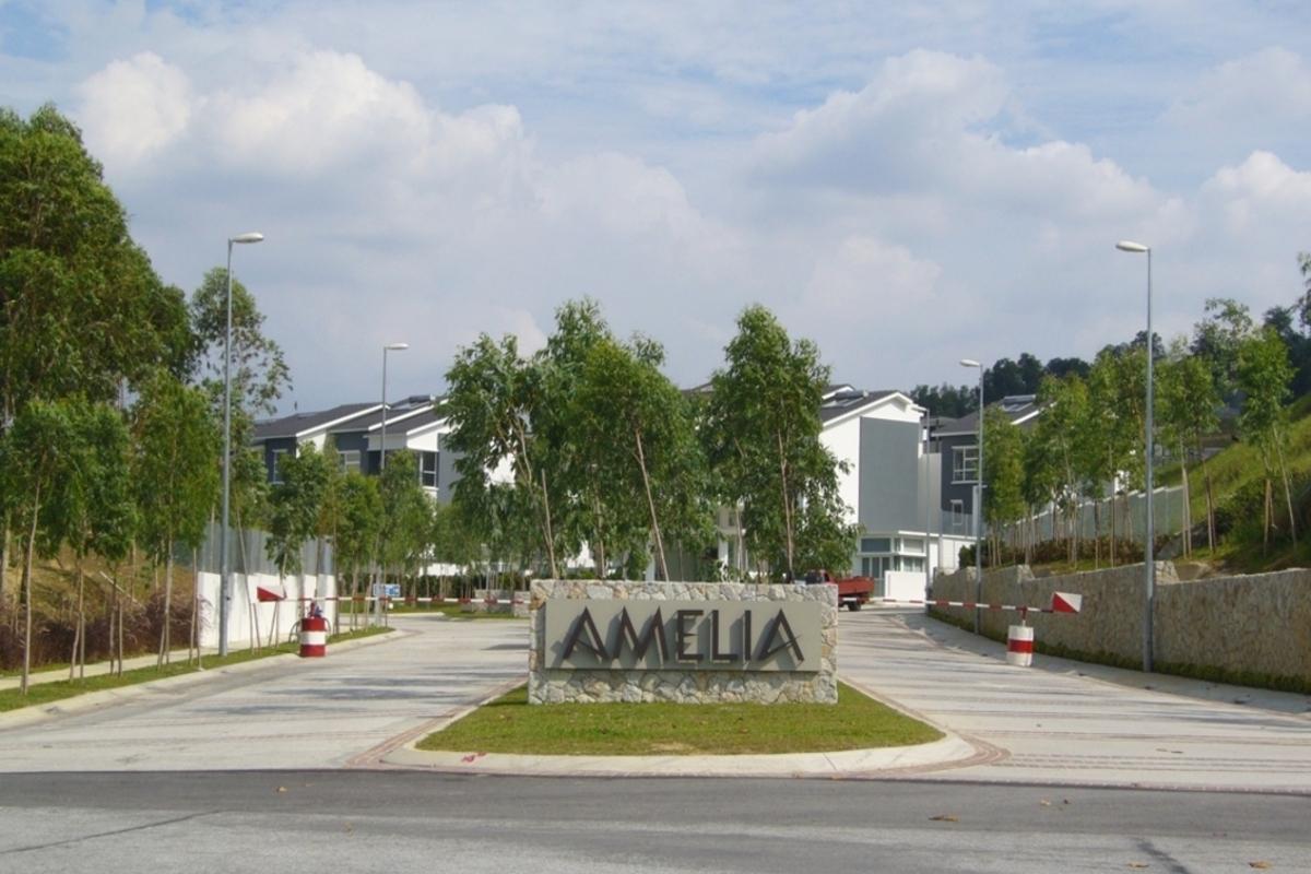 Amelia Photo Gallery 0