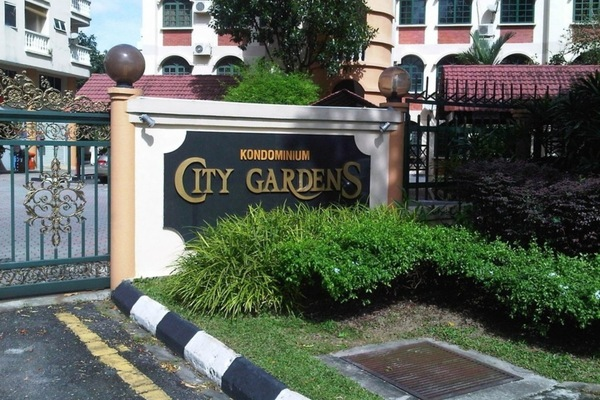 City Gardens's cover picture