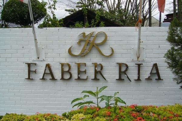 Faber Ria's cover picture