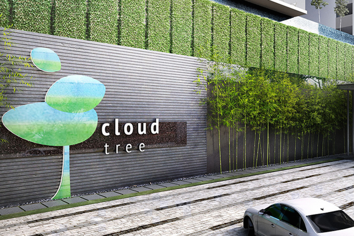 CloudTree Photo Gallery 0