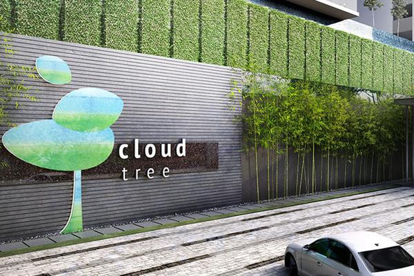 CloudTree Photo Gallery 0