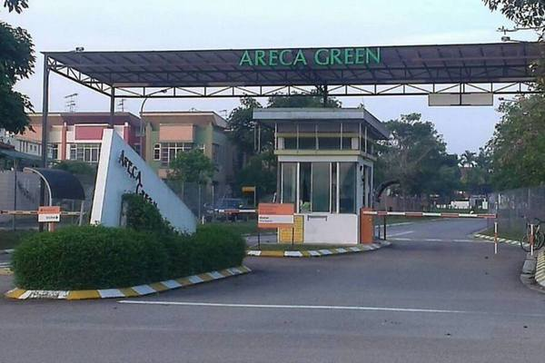 Areca Green's cover picture