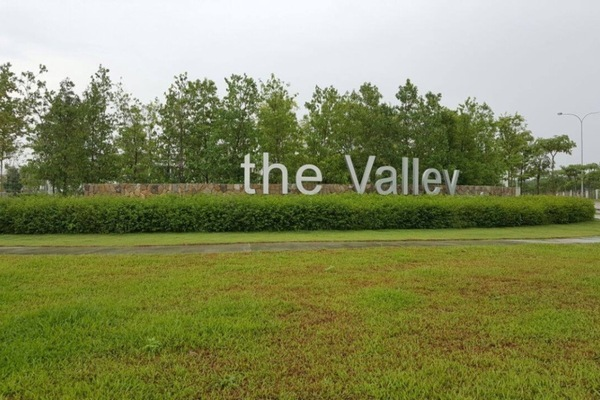 The Valley's cover picture