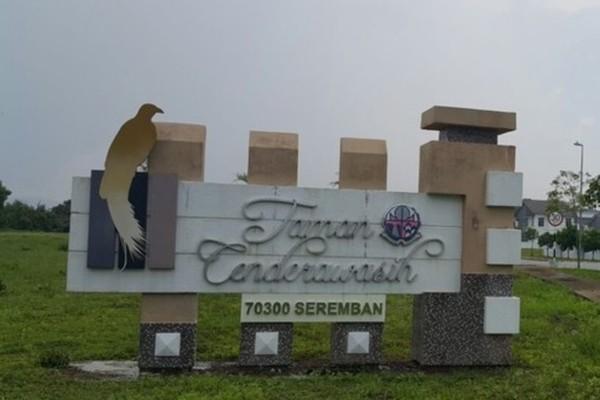 Taman Cenderawasih's cover picture