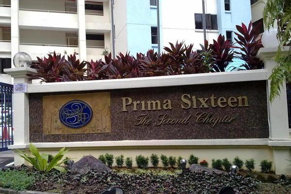 Prima 16's cover picture