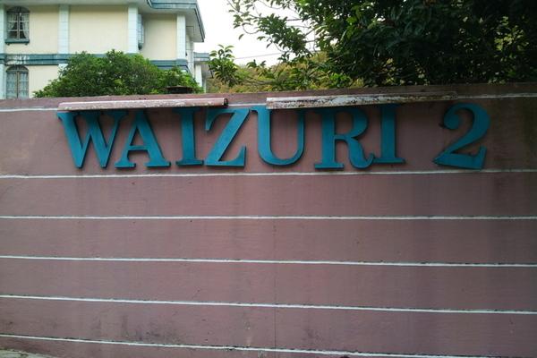 Waizuri 2's cover picture