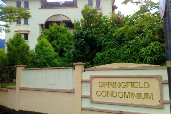 Springfield's cover picture