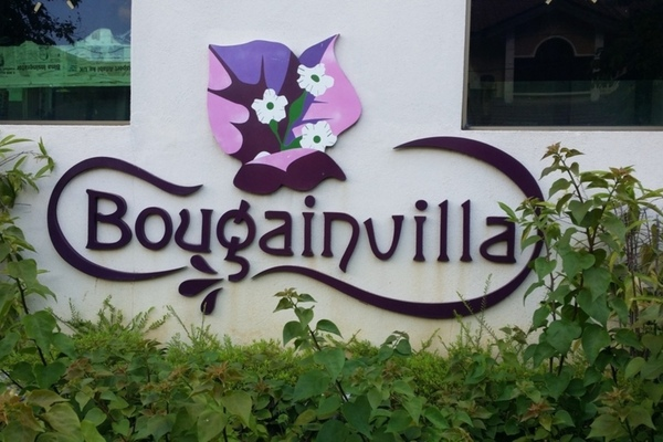 Bougainvilla's cover picture