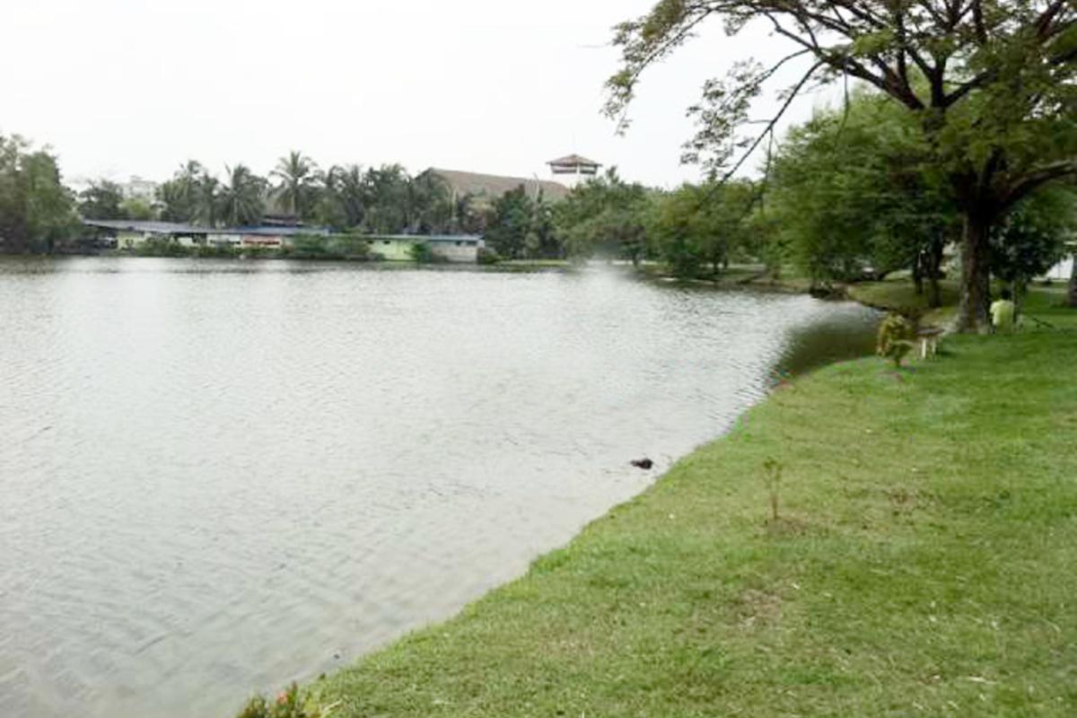 Pandan Lake View Photo Gallery 6