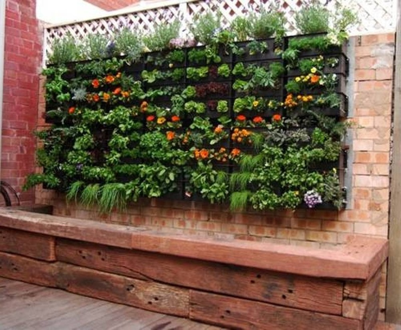 Vertical Gardens Are The New In Propsocial