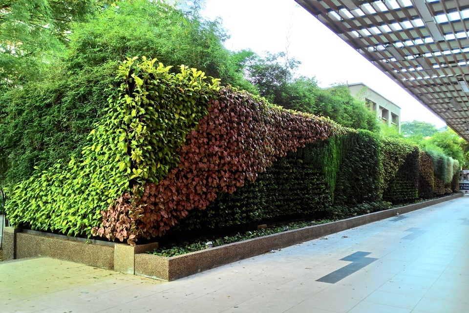 2 vertical garden property home propsocial