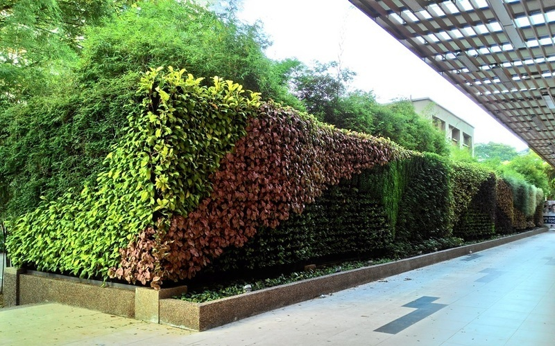 2 vertical garden property home propsocial truncate