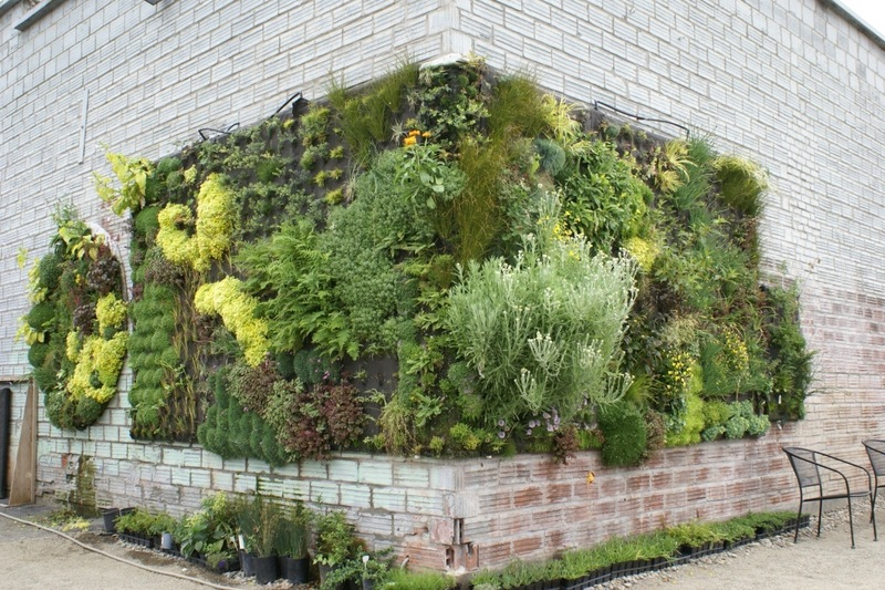 An Additional Idea Is Affixing Netted Wiring To A Wooden Frame. If You Want  To Build Your Vertical Garden Against The Wall Of Your House, Make Sure To  Place ...