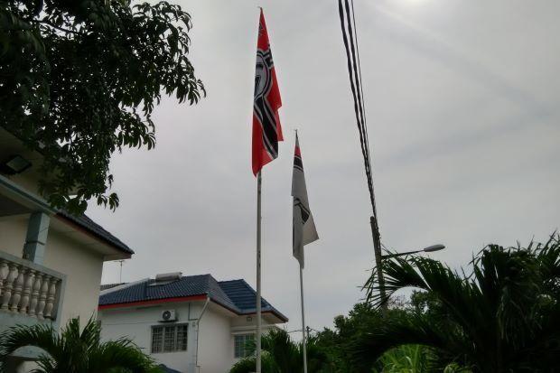 Naziflagpuchong large