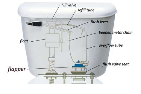 Toilet parts labeled