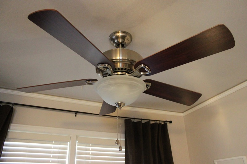 Replacment ceiling fan light shades large