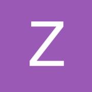 Ziguan0413 small