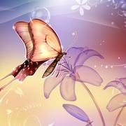 Butterfly art small