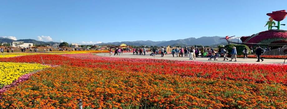 Xinshe Sea of Flowers.jpg