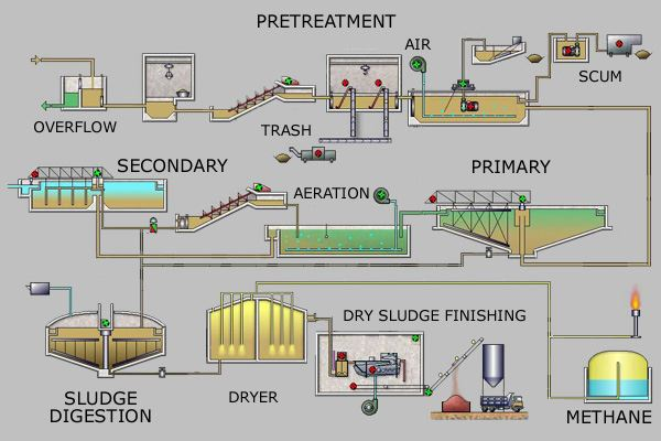 Sewage Treatment Plant Processstages And Energy Generation