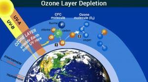 depletion for o-zone coating dissertation help