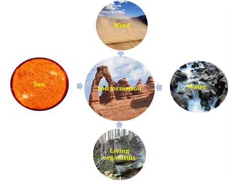 Soil formation & Minerals in Soil