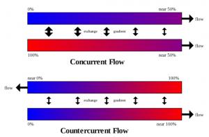Countercurrent multiplier