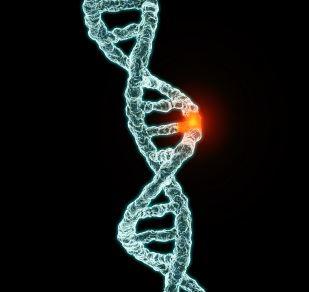 Mutation of Genes