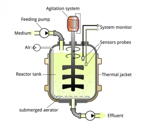 Simple stirred-tank bioreactor